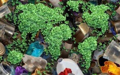 De residuo orgánico a bioplástico: reciclaje Km 0